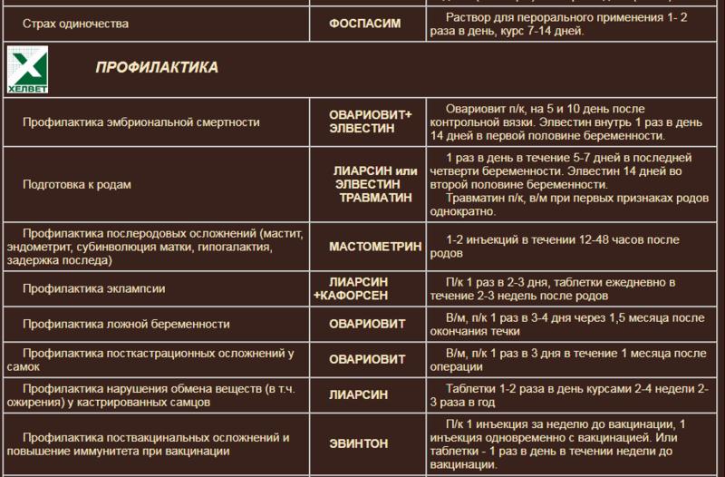 Гомеопатия Хелвет 8c100b10