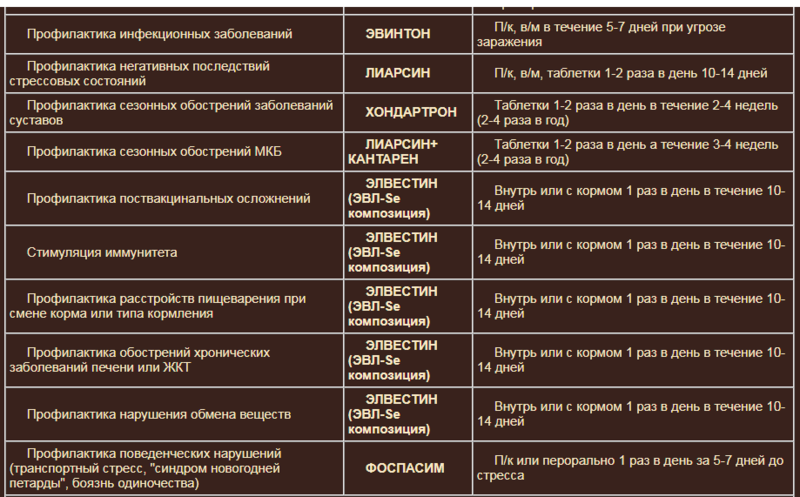 Гомеопатия Хелвет A4163e10