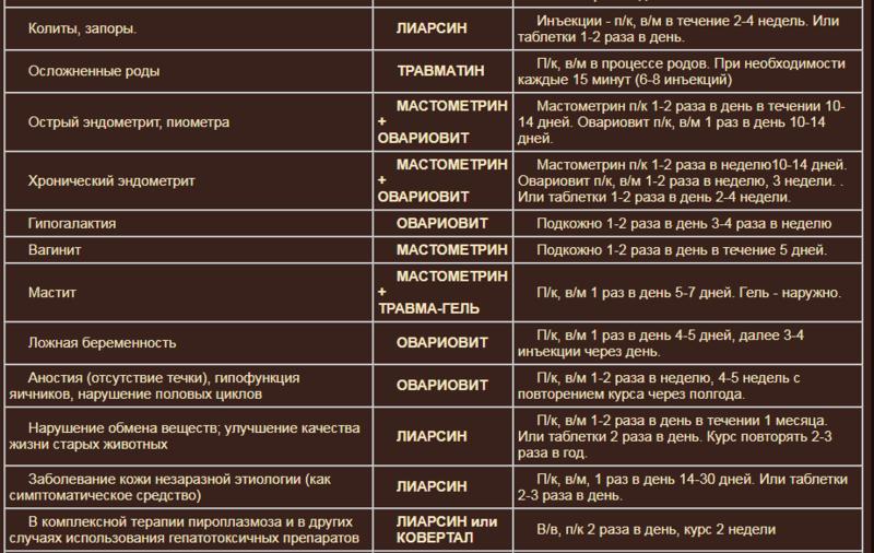 Гомеопатия Хелвет F0eb9e10
