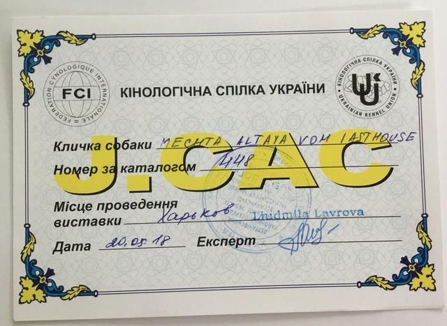 19-20.05.2018 CAC +CACIB  (Харьков) Ii_111