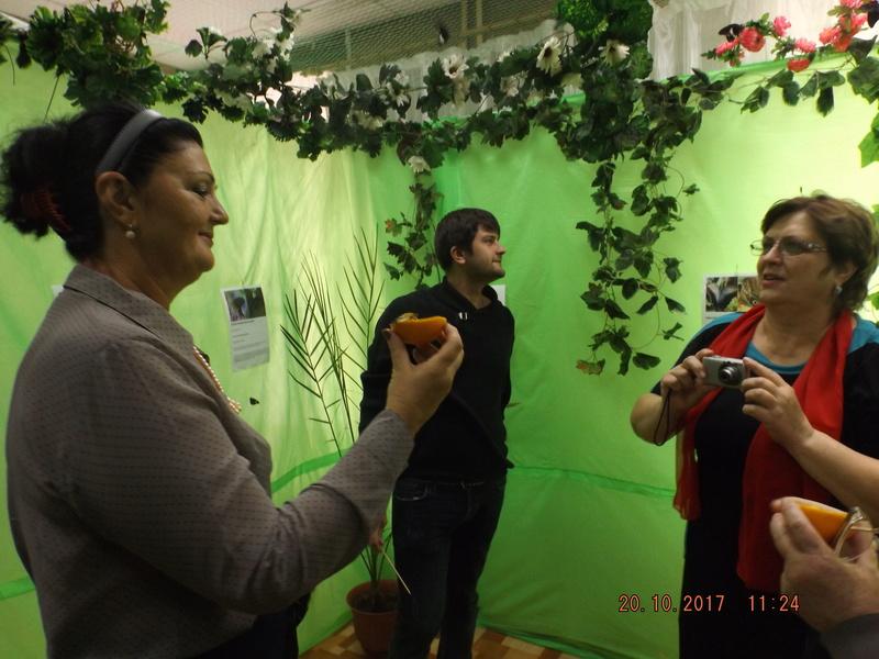 Третья экскурсия на выставку тропических бабочек. Dscf3610