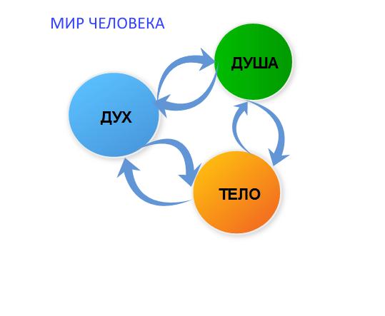 УРОК 12. МАГИЯ РАСТЕНИЙ  Op065x10