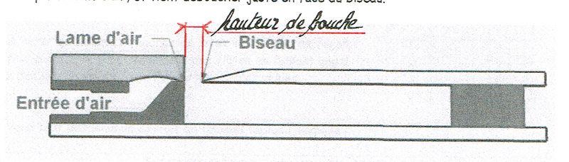 Mon orgue de barbarie - Page 2 Hauteu10