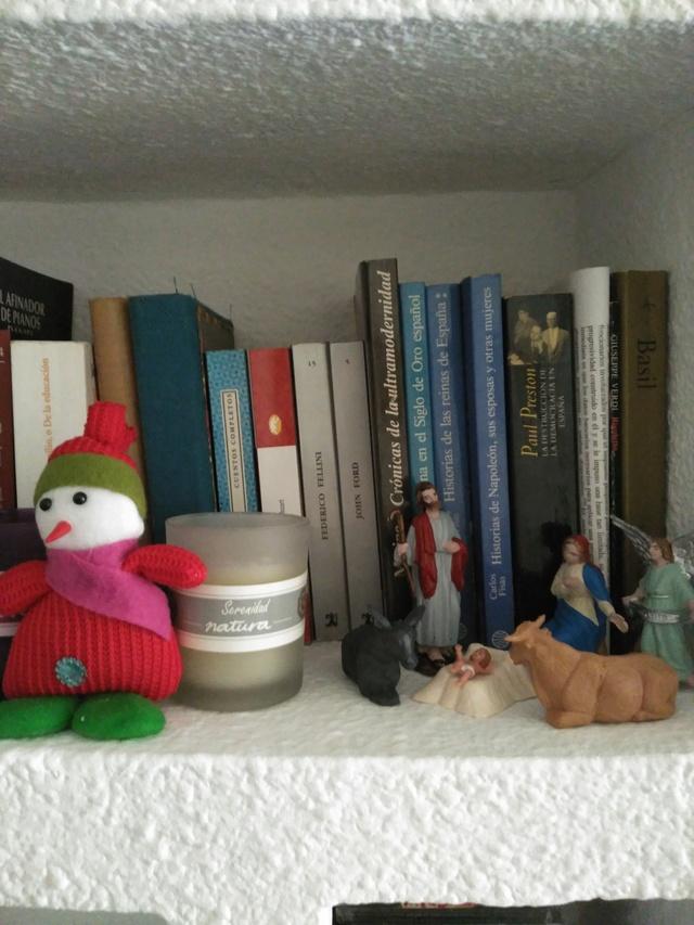 La navidad no es mas que una perspectiva ilusoria. - Página 3 Img_2174