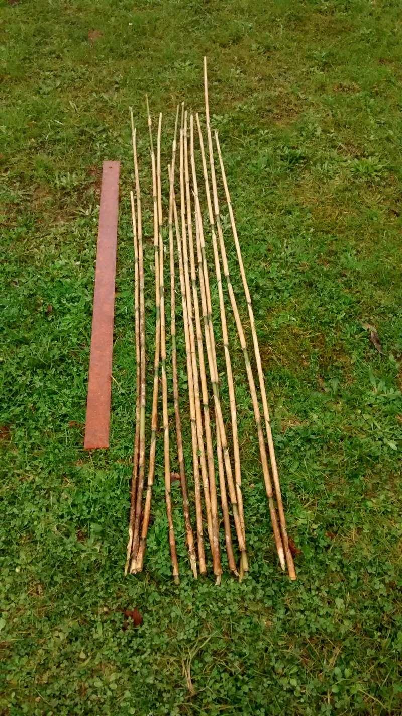 Flechas de bambú Img_2012