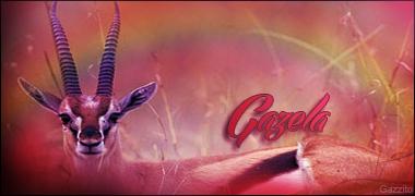 [ENTREGA] CMD [SIGN] Gazela10