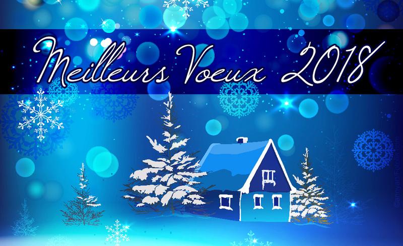 vœux de bonne année Cartes11