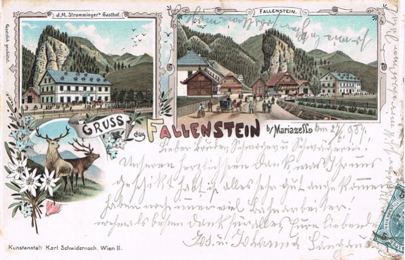 Fallenstein Fa11