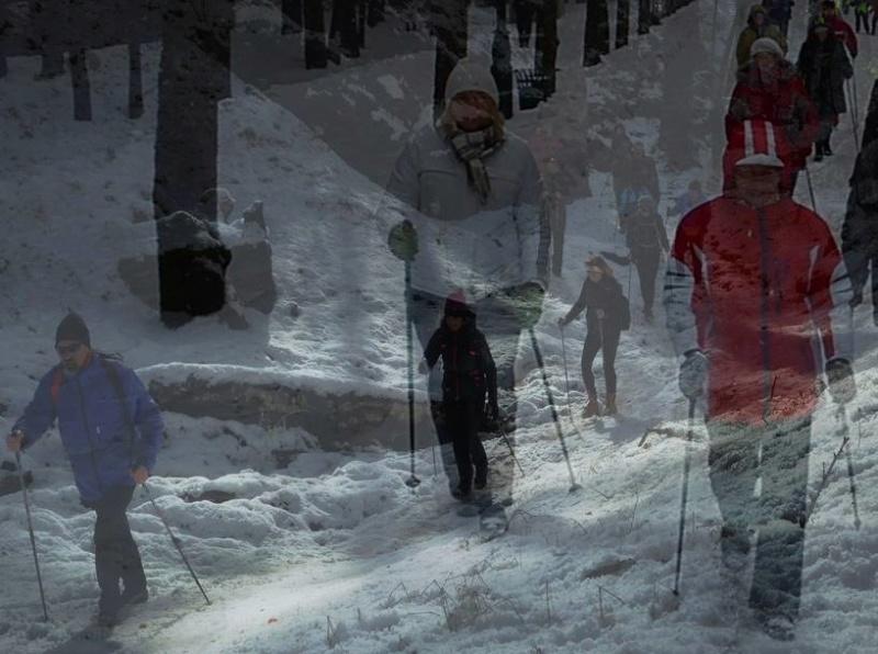 Marche Nordique en hiver Hiver10