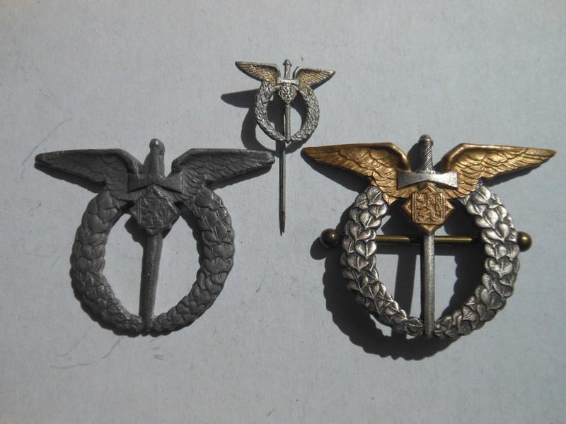 identification RARISSIME badge pilote tchèque WW2 Dscn3410