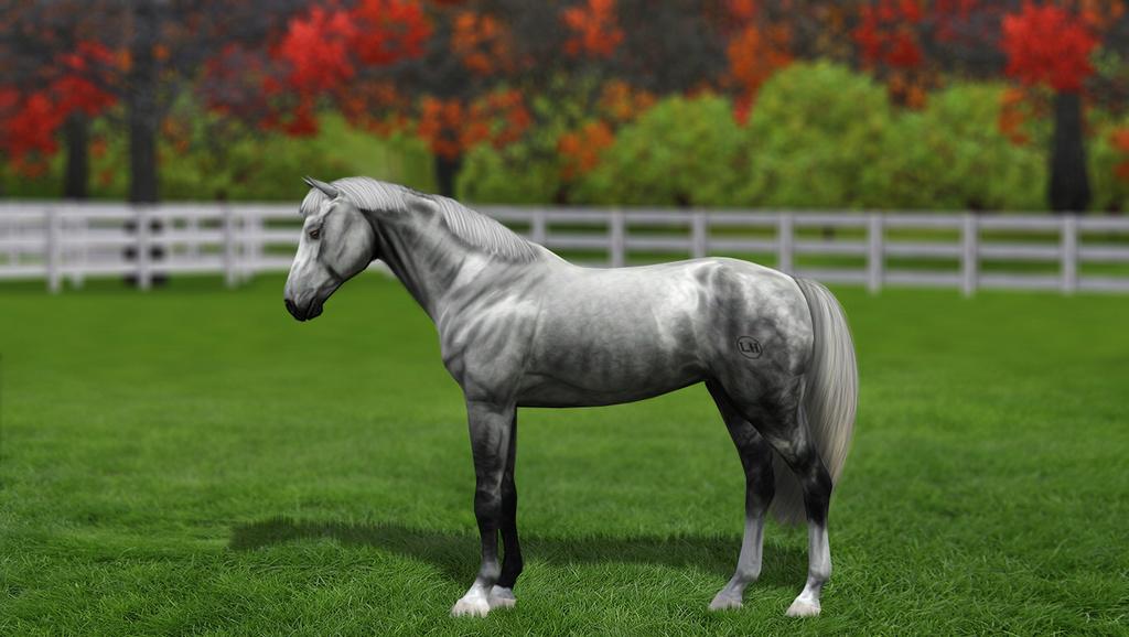 Регистрация лошадей в RHF 2 - Страница 8 1811