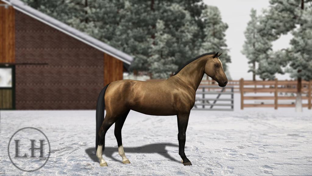Регистрация лошадей в RHF 2 - Страница 8 2211