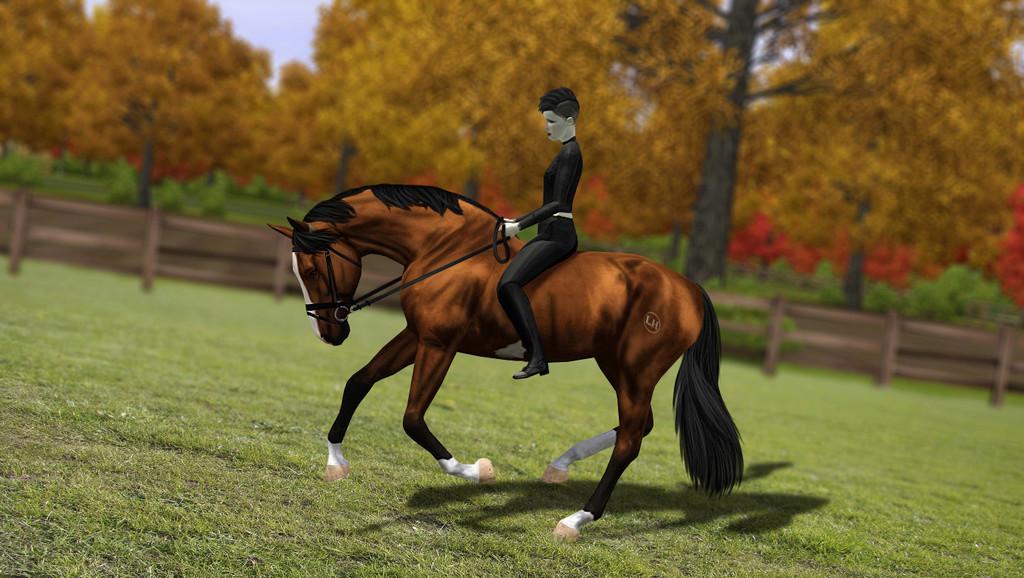 Регистрация лошадей в RHF 2 - Страница 8 2411