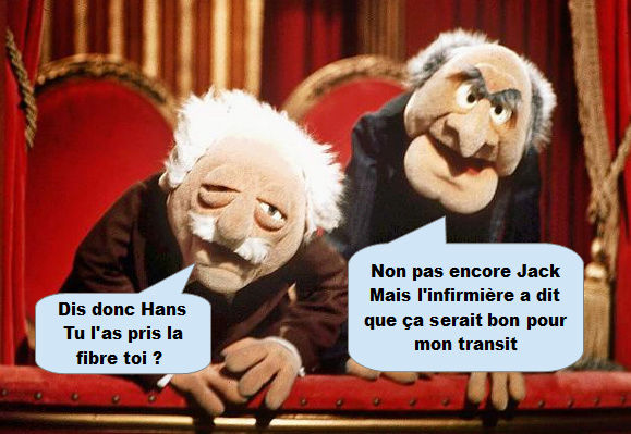 Session d'information Joueurs - Administrateurs - Page 2 Muppet11