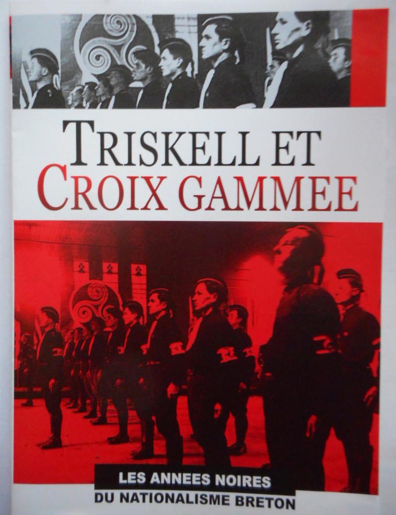 Triskell et croix gammée Dscn1610