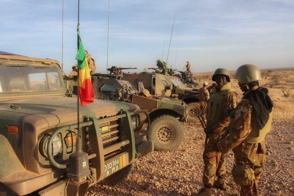 La première opération d'une unité de la force du G5 Sahel  21854910