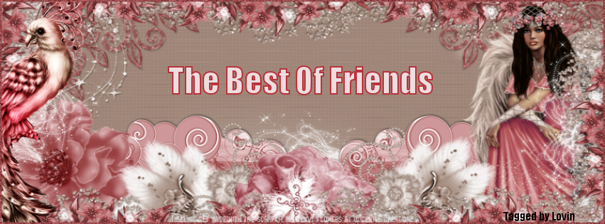 The Best Of Friends