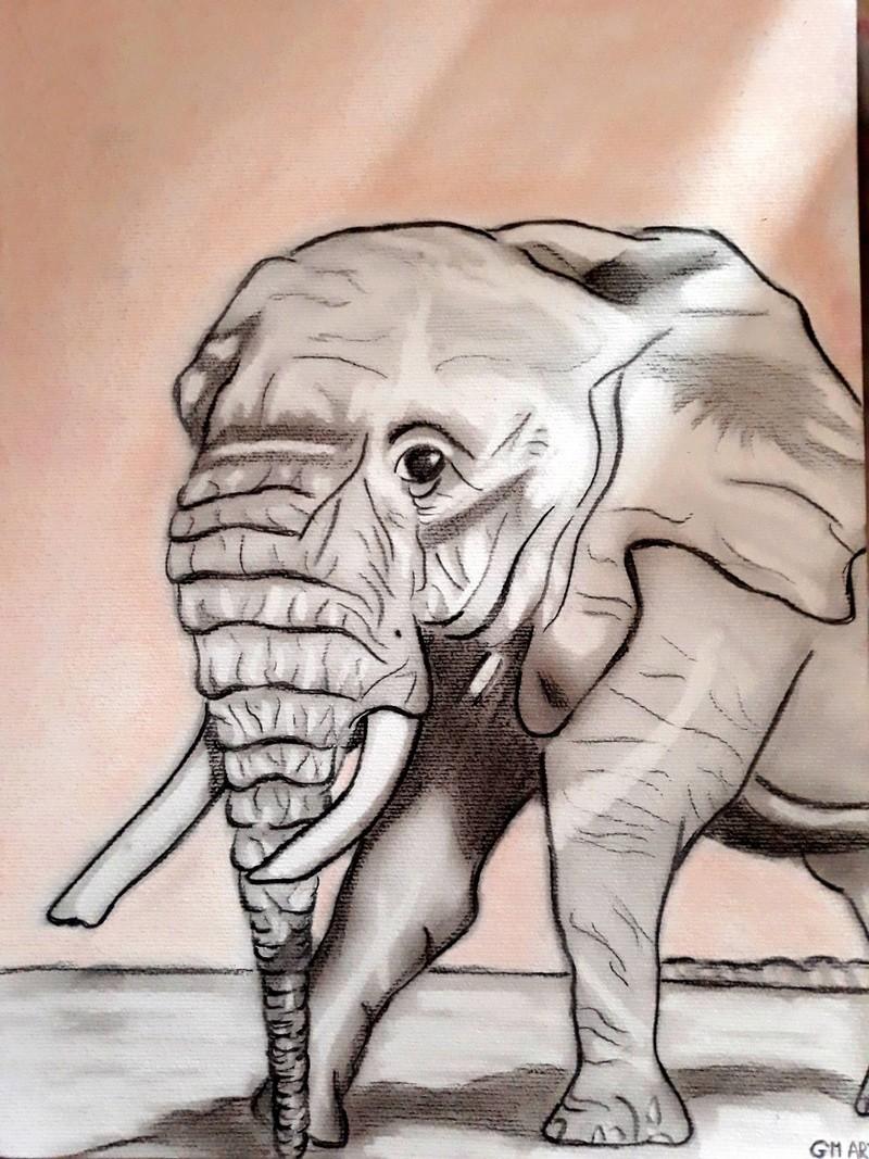 portraits marilyne monroe et dessin elephant  20180311