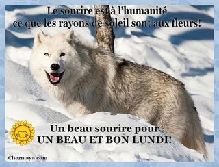 Bonjour /bonsoir de Février  - Page 6 1etbon10