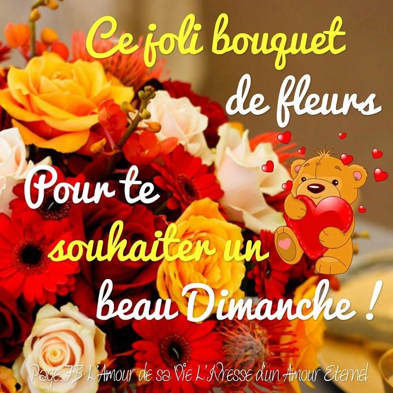 Bonjour /bonsoir de Février  - Page 4 Dimanc10