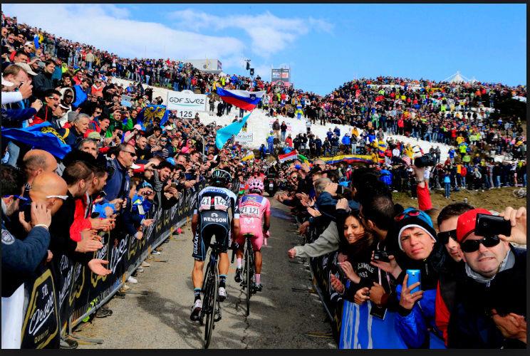 Giro d'Italia 2018 31819810