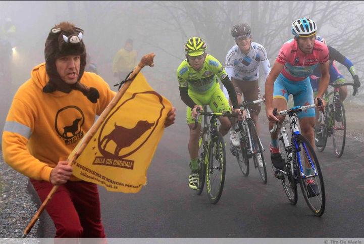 Giro d'Italia 2018 31822510
