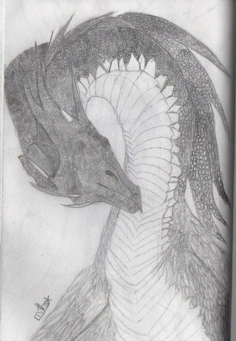 essais  de dragons Img_2712