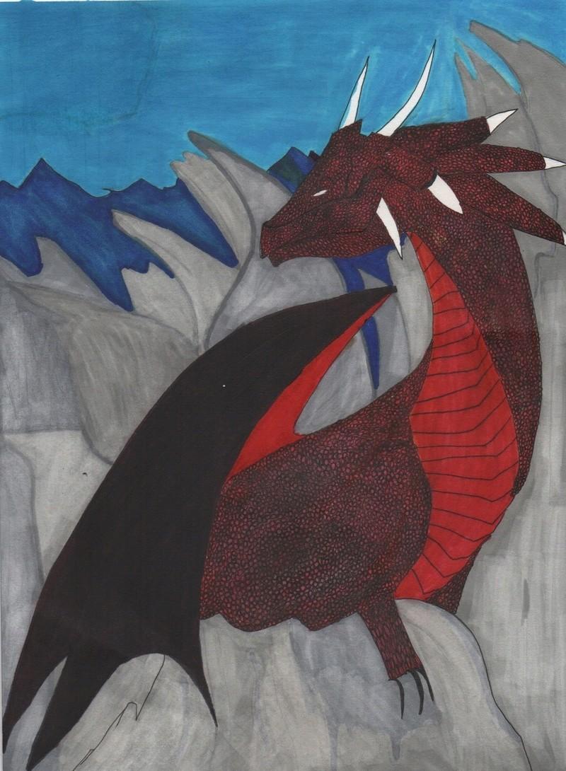 essais  de dragons Img_2713