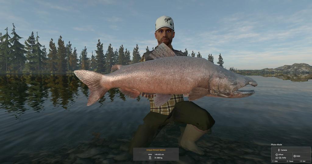 salmone unico Salmon11