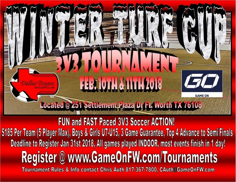 Winter Turf Cup 3v3 Tournament - 04 Girls Winter10