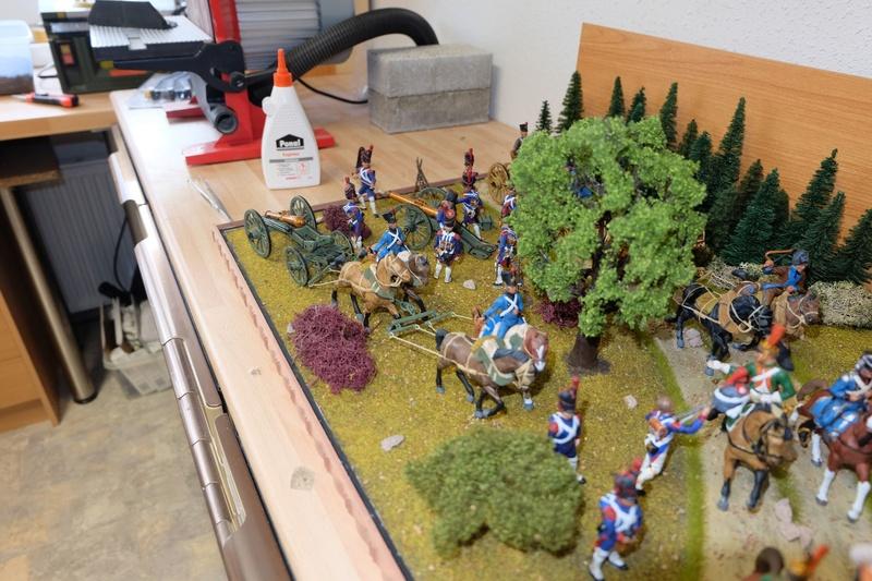 Napoleonische Artillerie am Vortag der Schlacht 1:32 - Seite 6 Dscf4938