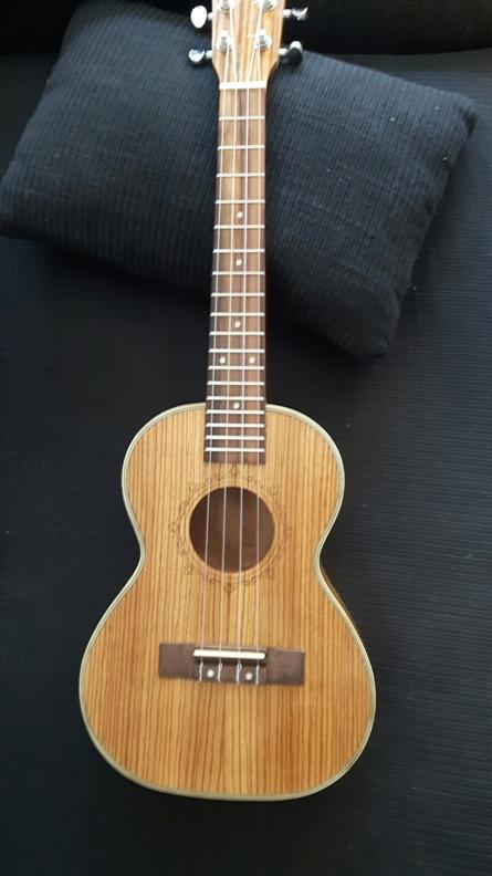 Les guitares d'un luthier aussi amateur que passionné ... - Page 28 20180511