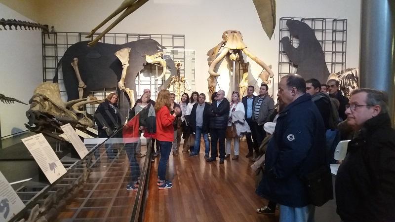 14-04-2018 Visita guiada a la sección de Geologia y Paleontología del Museo Nacional de Ciencias Naturales 2018-015