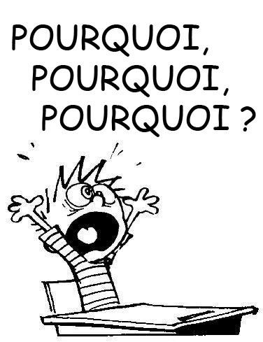 DEVINETTE DU JOUR - Page 2 Pourqu10