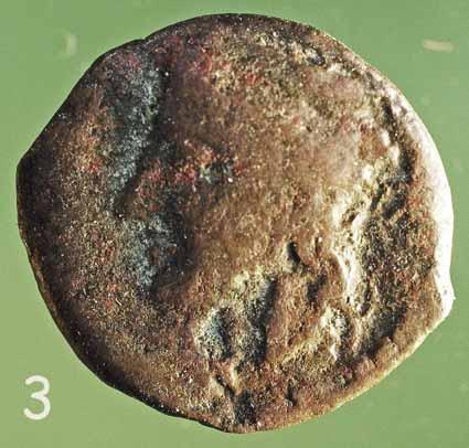grecque à la grappe de raisin Naxos_12