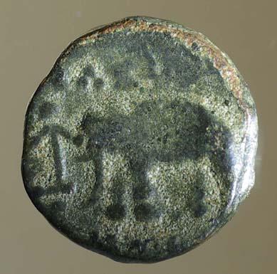 """Bronze séleucide pour Antiochos III """"à l'éléphant ... Nc_75410"""
