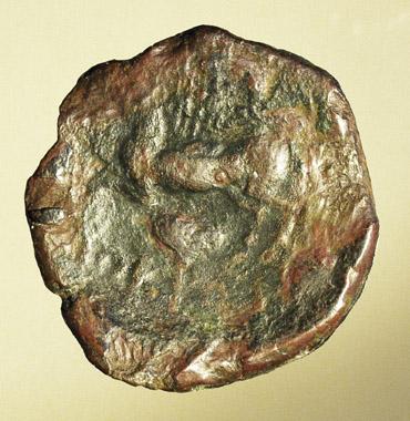 grecque au cheval bondissant Nc_76011