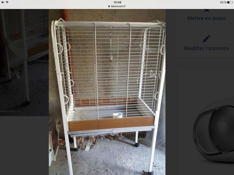 Bientôt une nouvelle cage ! Img_3110