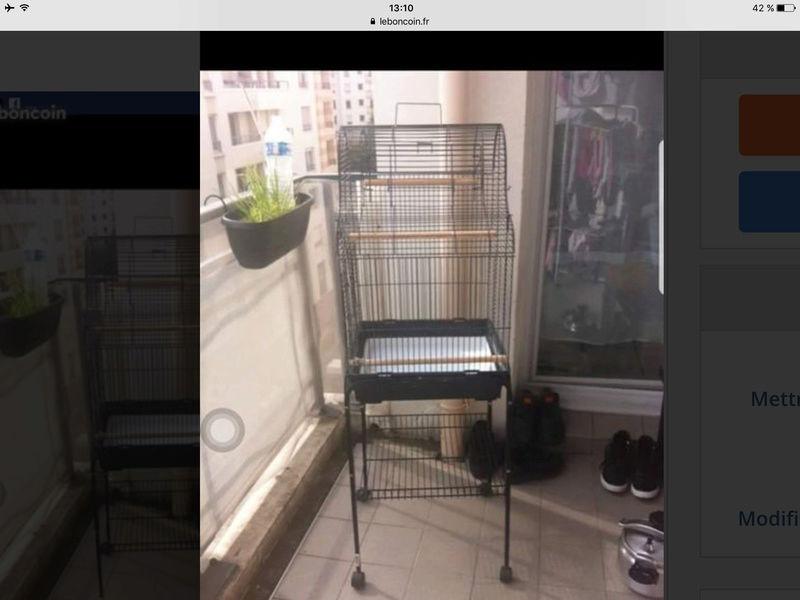 Bientôt une nouvelle cage ! Img_3111