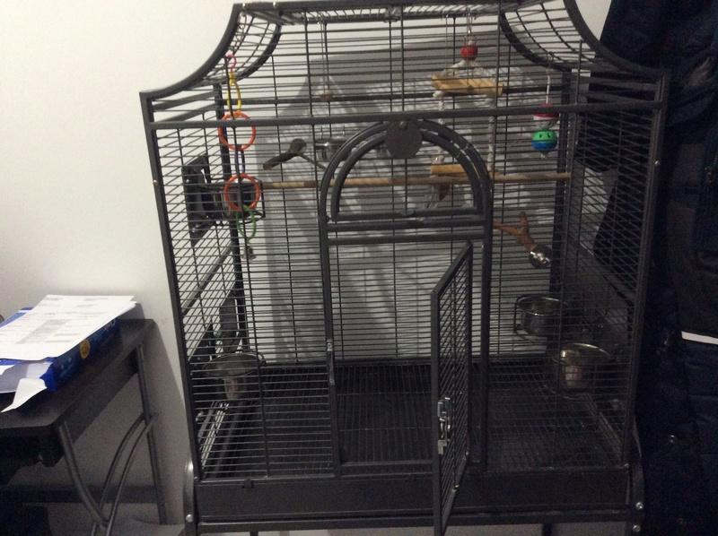Bientôt une nouvelle cage ! Img_3410