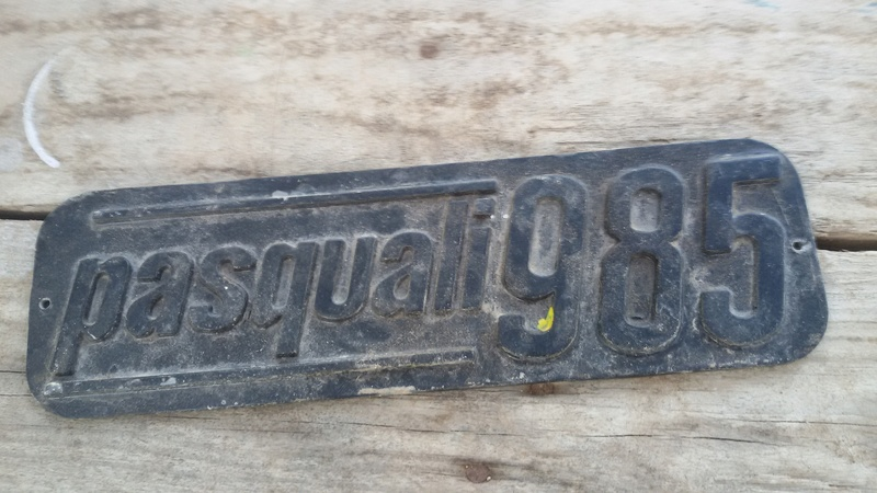 [Pasquali] Quitar pintura chapa logotipo aluminio 20180210