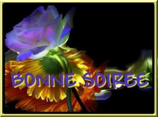 Bonjour / Bonsoir de Novembre  - Page 5 54445910