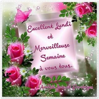 Bonjour / Bonsoir de Novembre  - Page 4 A6a37910