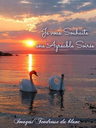 Bonjour Bonsoir de Janvier  - Page 4 Bonne-30