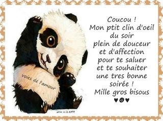 Bonjour /bonsoir de Février  - Page 2 Bonne-44