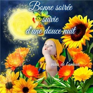 Bonjour /bonsoir de Février  - Page 4 Bonne-47