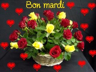 Bonjour / Bonsoir d'Octobre  - Page 5 Mardi_10