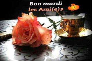 Bonjour /bonsoir de Février  - Page 2 Mardi_14