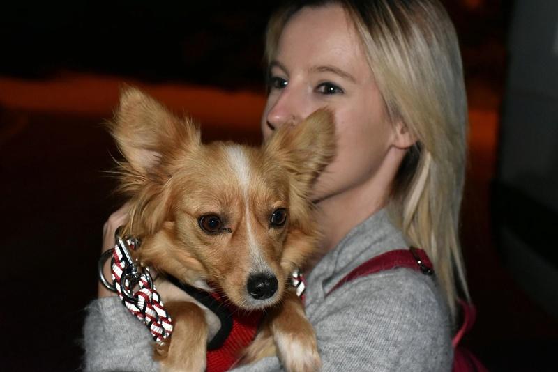 Valentina - femelle - chez Rudy (Iasi) - réservée adoption (68) 31543510