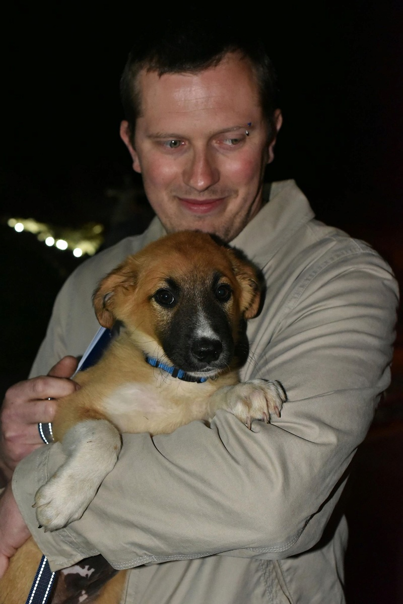 Athos - mâle - chez Andreea - Târgu Frumos - réservé adoption (68) 31901810